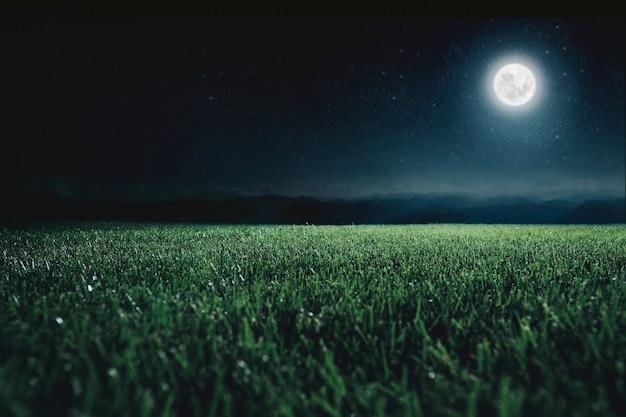 Зеленое поле на фоне ночного неба. элементы этого изображения предоставлены наса