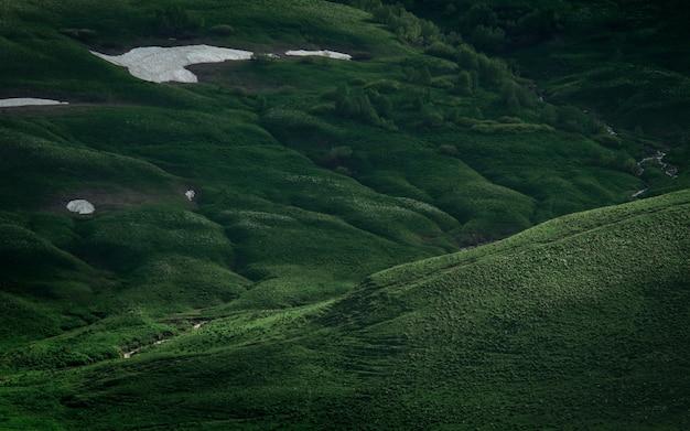 Зеленое поле на плато. мирные луга