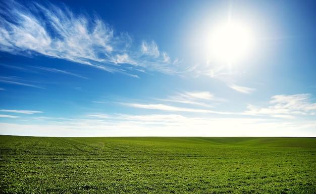 雲と青い空の下の緑のフィールド。農業の風光明媚なイメージ。生態学の概念の写真。