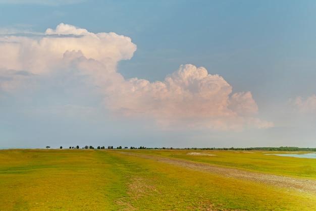 Зеленое поле с фоном голубого неба