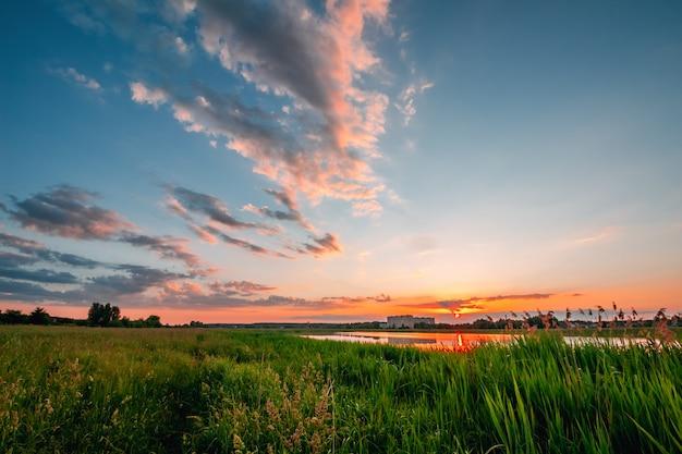 夕暮れ時の草と緑のフィールド