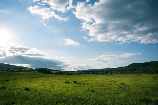丘のある曇りの朝の空と緑のフィールド