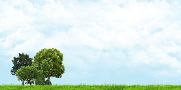 左隅の緑の野原と木々
