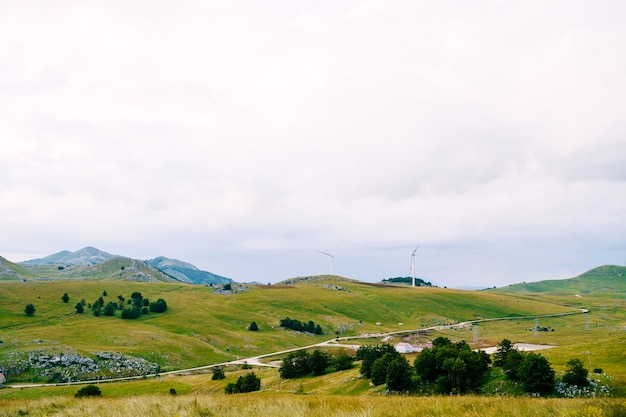Green fields on the hills and wind farms on the horizon. high quality photo