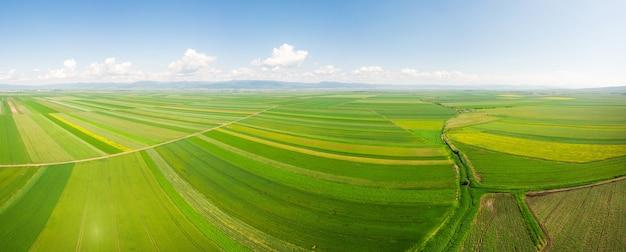 Green fields landscape in romania
