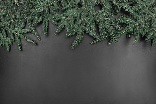 검은 칠판 배경에 프레임으로 녹색 전나무 분기합니다. 복사 공간 추상 모형
