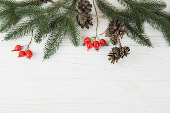 Green fir tree branches with small cones on table