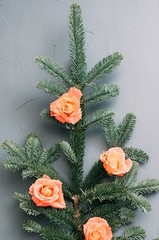 Green fir tree sprig decorated with peach rose buds