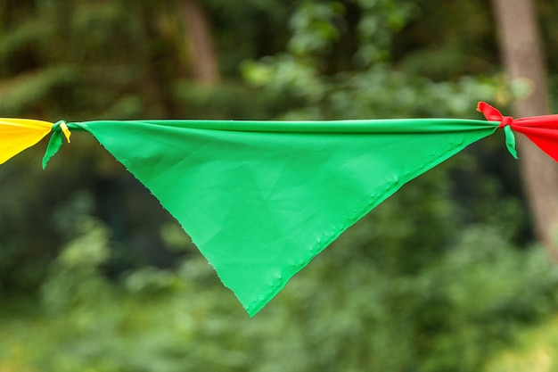 Green flag from a garland in the park