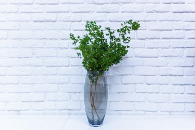 흰색 세라믹 벽의 배경에 있는 탁자 위의 투명한 꽃병에 있는 녹색 꽃. 벽 배경에 꽃병에 꽃.