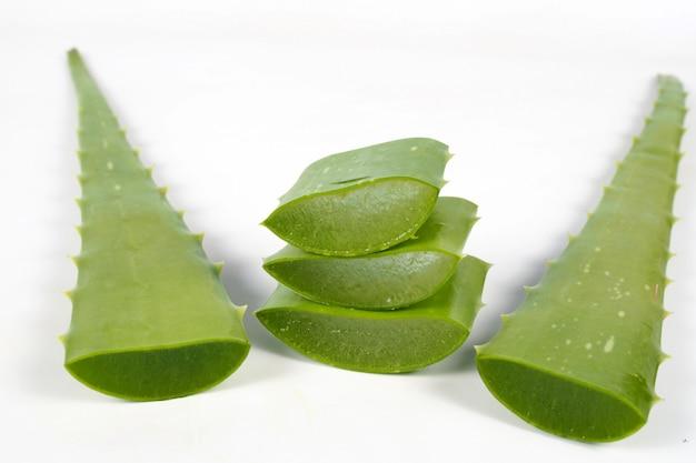 白い背景の上の緑の新鮮なアロエベラの葉。健康のためのハーブ