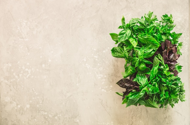 Green fresh aromatic herbs - thyme, basil, parsley on gray background. banner collage, food frame.