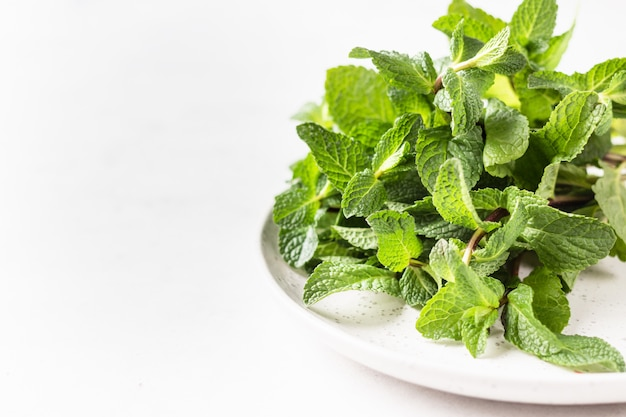 Green fresh mint on ceramic plate, selective focus. copy space for space.