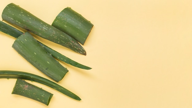 Green fresh slices of aloe vera on yellow background