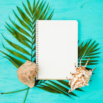 Green fresh tropical plant leaves near notepad and seashells
