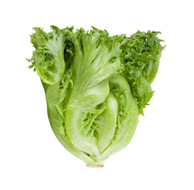 화이트에 녹색 frillies 빙산 양상추