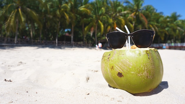 Green funny coconut in sun glasses on white sandy beach, summer travel concept background.