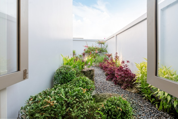 Green garden outside the house