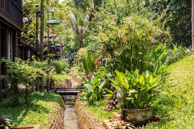 Зеленый сад с небольшим каналом