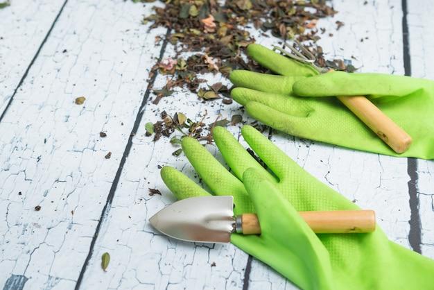 녹색 원예 장갑 및 흰색 나무 배경에 식물을 이식하기위한 도구