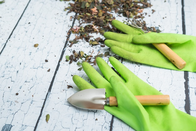 Green gardening gloves and tools for transplanting plants on white wooden background
