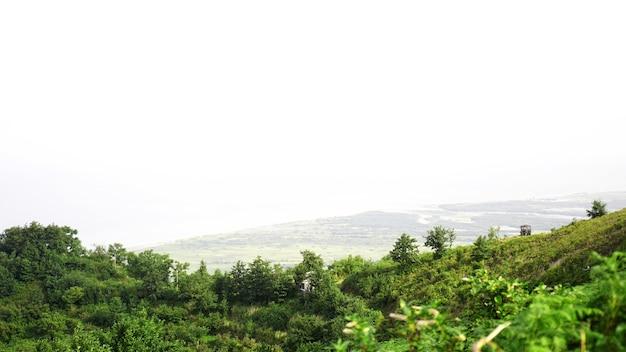 Зеленая поляна в горной долине в солнечный день