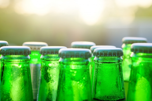 Green glass bottles of beer on the background at sunset with selective focus