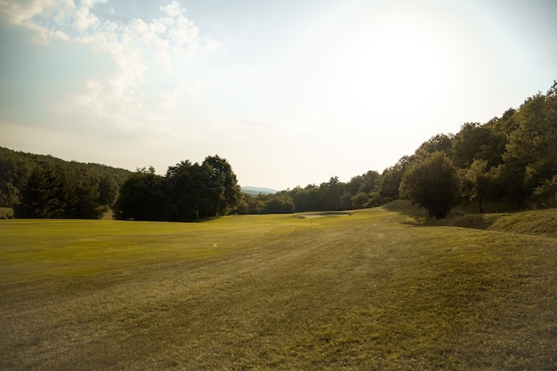 Green golf course in spain with forest