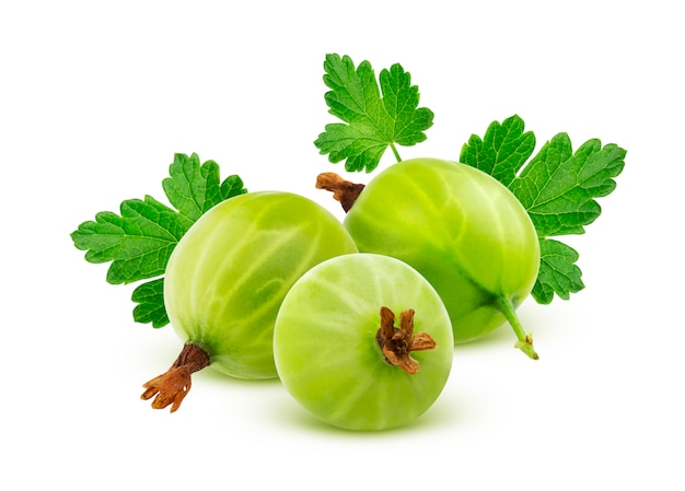 Green gooseberry with leaves isolated on white