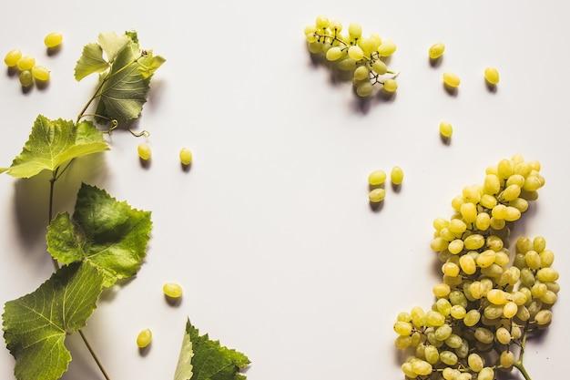 白い背景で隔離の緑のブドウの房