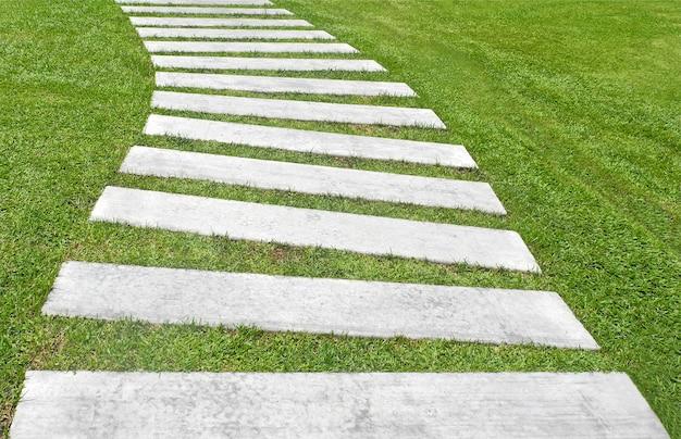 Зеленая трава и каменная дорожка в парке