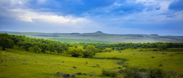 Зеленая трава и деревья с горой под небом