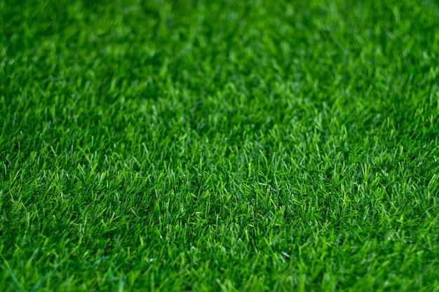 푸른 잔디 배경, 축구장