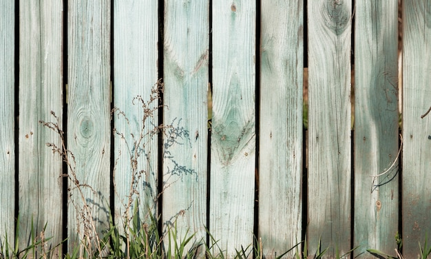 Green grass on a background of old rustic style fence.