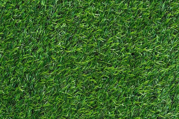 Green grass background and textured