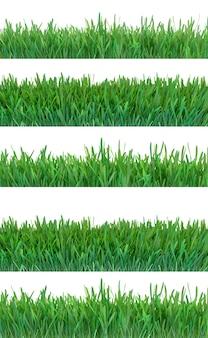 Зеленая трава баннеры набор природа фон луг весна лето сезон рост растений 3d рендеринг