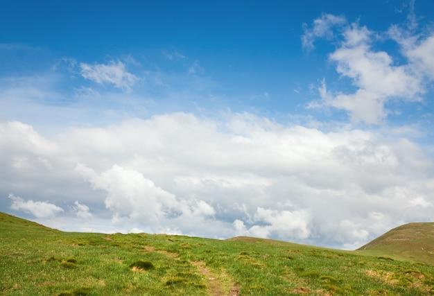 緑の草が夏の山腹、歩道、曇り空を覆っていた