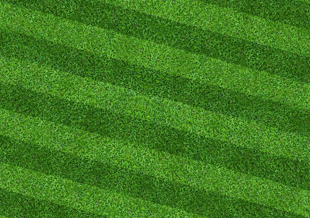 Green grass field background for soccer and football sports. green lawn pattern and texture background. close-up.