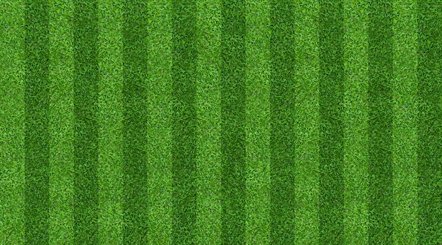 Green grass field background for soccer and football sports