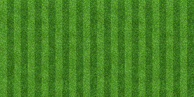 Green grass field background for soccer and football sports.