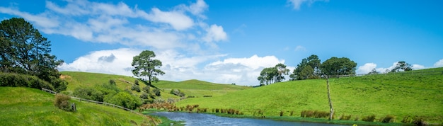 Green grass field in the countryside landscape. peaceful rural area scenery.