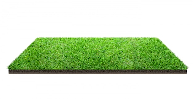 Green grass field isolated on white with clipping path. sports field. summer team games.