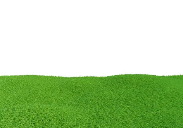 Green grass field isolated on white