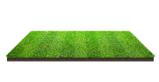 Green grass field isolated with clipping path. sports field. summer team games.