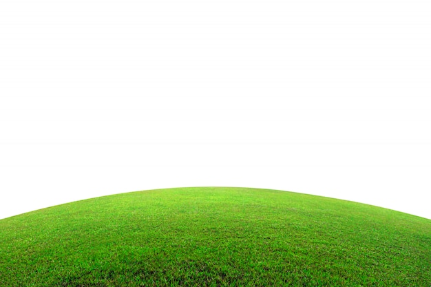 Green grass field on mountain isolated on white background.