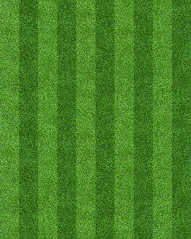 Green grass field pattern background for soccer and football.