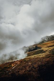Поле зеленой травы под белыми облаками