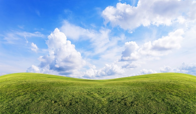 Green grass field with clear blue sky and clouds background