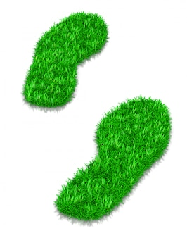 Green grass footsteps