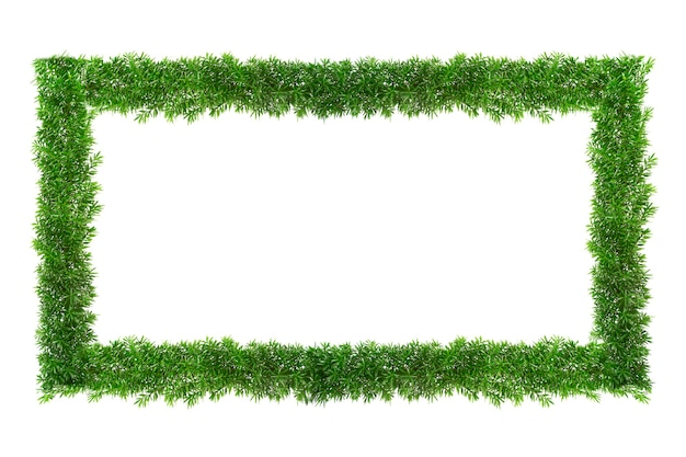 Green grass frame with copyspace square border template isolated on white background